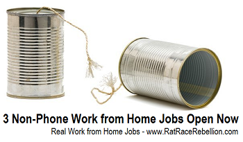 3 Non-Phone Jobs Available Now! www.RatRaceRebellion.com