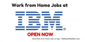Work from Home Jobs at