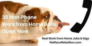 35 Non-Phone Work from Home Jobs Open Now