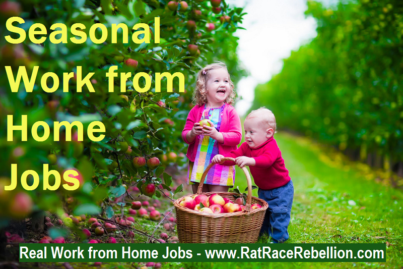 seasonal work from home jobs