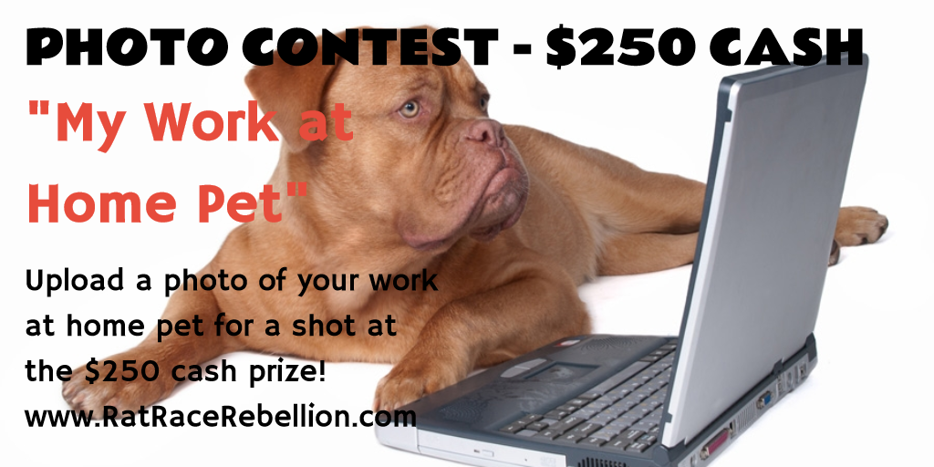 $250 Photo Contest: My Work at Home Pet - www.RatRaceRebellion.com