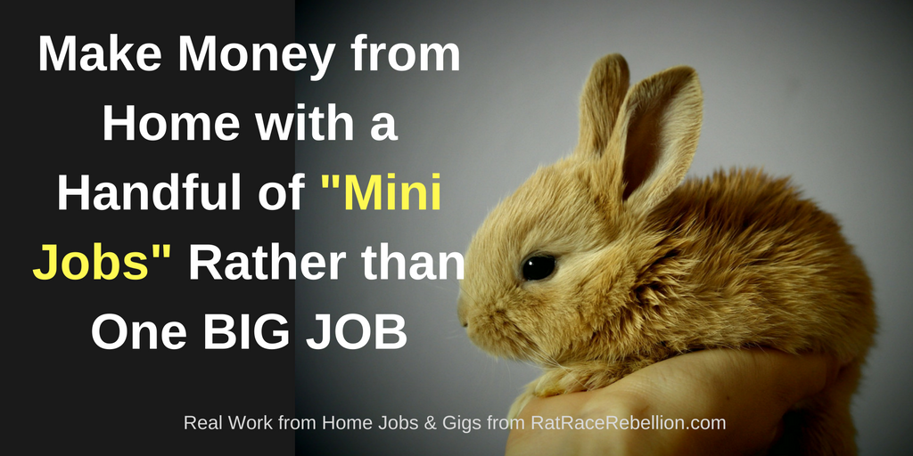 Make Money with a Handful of _Mini Jobs_ Rather the One BIG JOB(2)