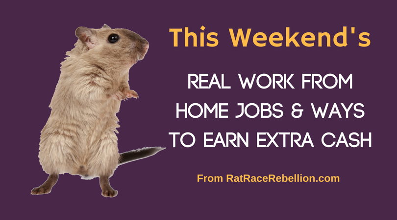 Work from Home Jobs & Extra Cash - Feb. 25 - 26, 2017