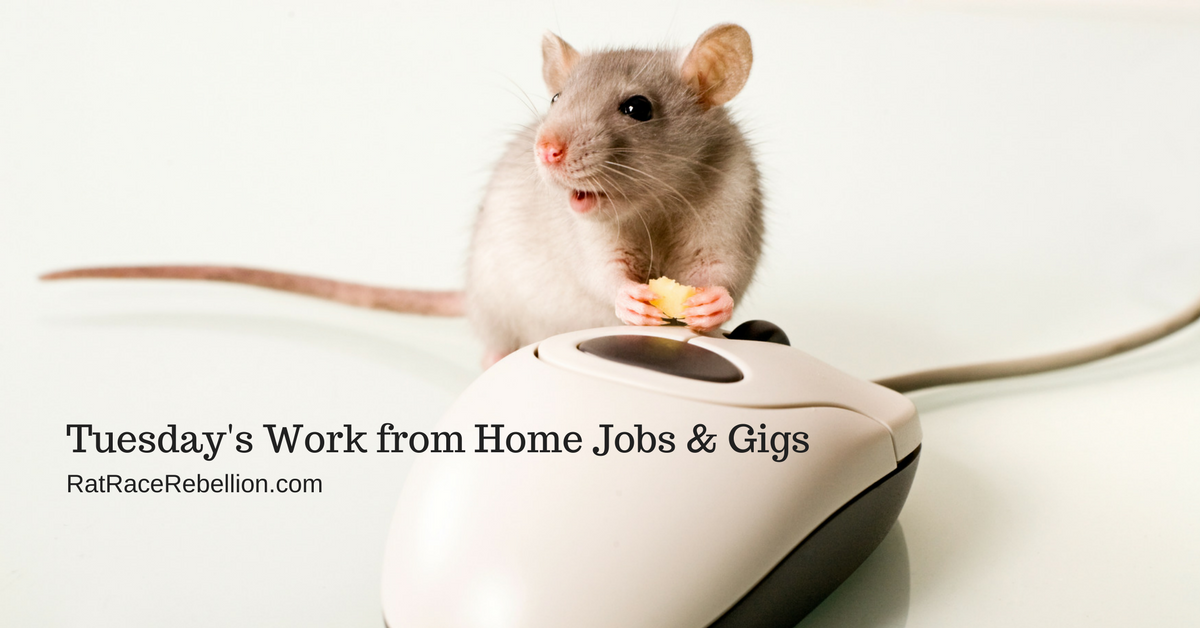 Tuesday's Work from Home Jobs & Gigs(1)