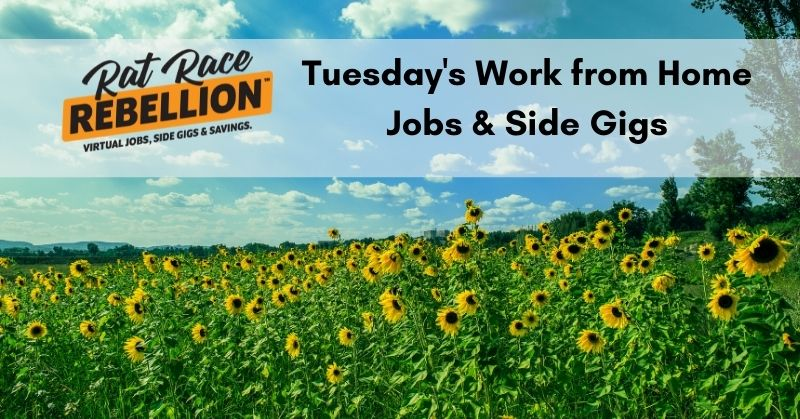 work from home jobs & gigs